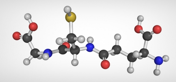 Glutathione – The Body's Most Powerful Healing Agent